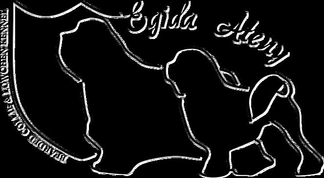 Egida Ateny Lwi Piesek